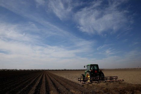 How Farmers Are Implementing a Sharing Economy | Peer2Politics | Scoop.it