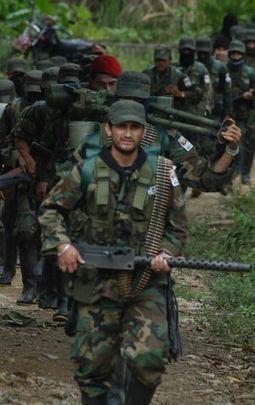 La guerrilla colombiana declara un alto el fuego unilateral e indefinido | Noticias de América Latina | Scoop.it