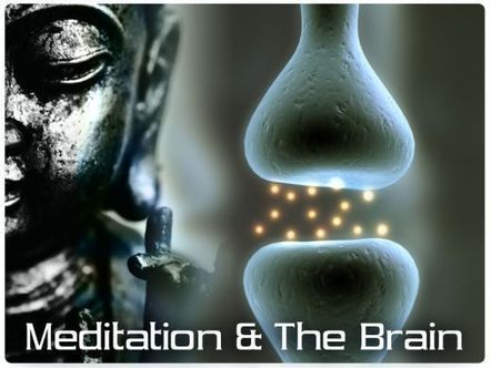A Neuroscientist Explains How Meditation Changes Your Brain | BODY OF FUTURE | Scoop.it