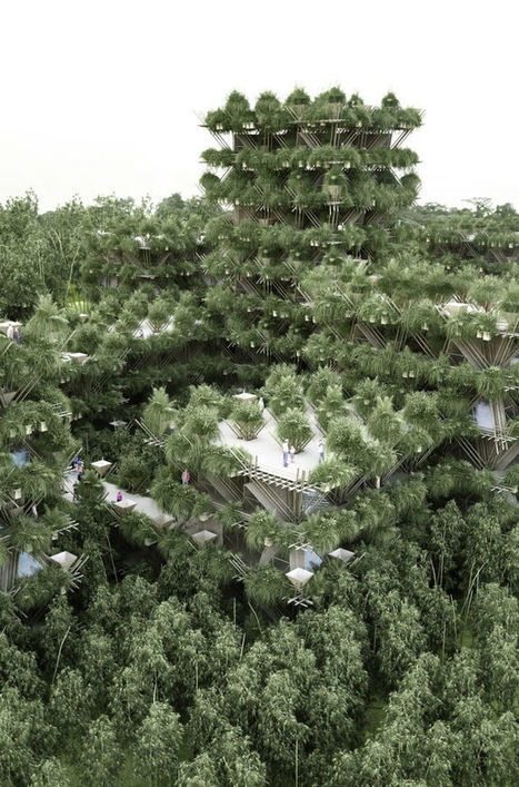 Cette ville de bambous pourrait voir le jour en 2023 | Développement Durable et Urbanisme | Scoop.it