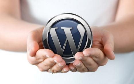 7 miti da sfatare su Wordpress   Social Media Consultant 2012   Scoop.it
