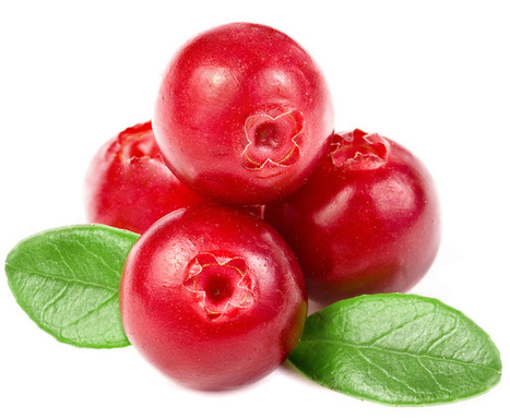 Top 10 #Health Benefits of non #GMO  Cranberries #antioxidants | Limitless learning Universe | Scoop.it