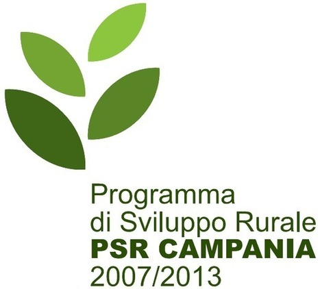 Incentivi alle aziende in Irpinia | Craft design | Scoop.it