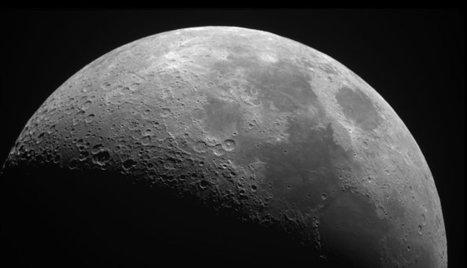 Quand le sage montre la lune, le fou regarde le doigt - un retour d'expérience sur le management à distance.   Leadership et Management   Scoop.it