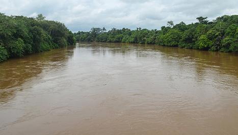 Sic Dev Net | Les rivières africaines émettent d'importantes quantités de gaz à effet de serre | L'actualité de l'Université de Liège (ULg) | Scoop.it