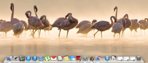 5 Ways to Enhance Functionality of the Mac Dock | Time to Learn | Scoop.it