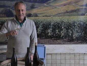 Saint-Romain : des vins fruités et minéraux   Epicure : Vins, gastronomie et belles choses   Scoop.it