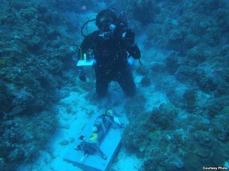 Undersea Soundscape Gives Insight Into Reef Health | DESARTSONNANTS - CRÉATION SONORE ET ENVIRONNEMENT - ENVIRONMENTAL SOUND ART - PAYSAGES ET ECOLOGIE SONORE | Scoop.it