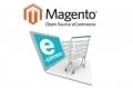 Magento : les 5 extensions incontournables pour votre e-commerce | Agence Web Newnet | Actus CMS (Wordpress,Magento,...) | Scoop.it