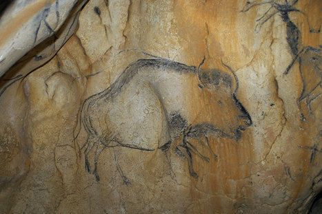 Mystery beast in ice age cave art revealed as cow-bison hybrid | Gaia Diary | Scoop.it