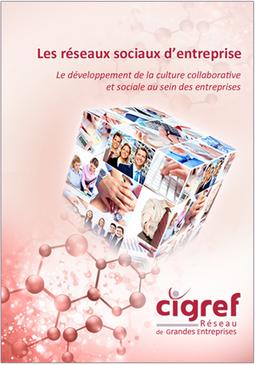 Rapport CIGREF : Réseaux sociaux d'entreprise, développement de la culture collaborative et sociale | CIGREF | usages du numérique | Scoop.it