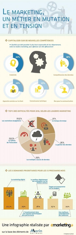 Marketing digital: un domaine prioritaire encore sous-valorisé | Digital infographics | Scoop.it