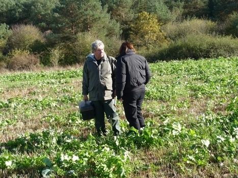 au chevet de la terre (rediffusion) / France Inter   pour mon jardin   Scoop.it
