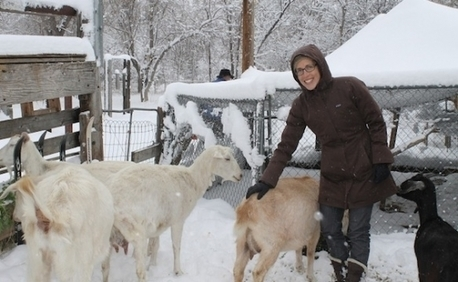 In Boulder, new JCC marries goats and Judaism | Lifestyle | Judaism in Today's World | Scoop.it