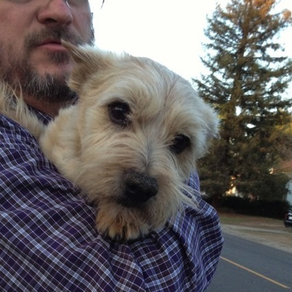 My Word with Douglas E. Welch » …but Mom, he followed me home! — End of the Day for February 5, 2014 | Gardening | Scoop.it