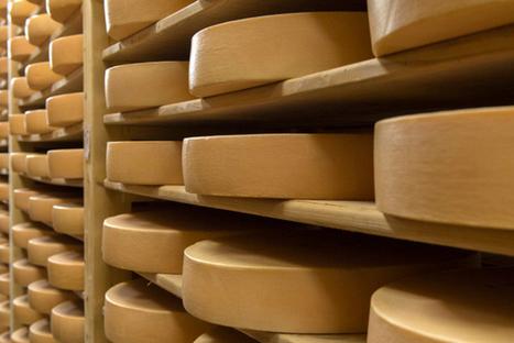 Suisse: Le chiffre d'affaires des exportations de fromage a baissé ... - Tribune de Genève | Industrie fromagère | Scoop.it