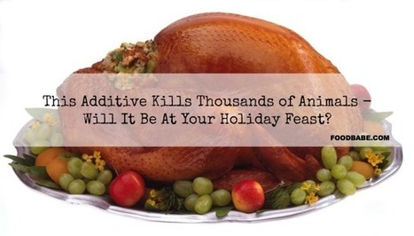 This Drug Has Sickened Thousands of Animals - Will It Be At Your Holiday Feast? | Plant-Based Nutrition | Scoop.it
