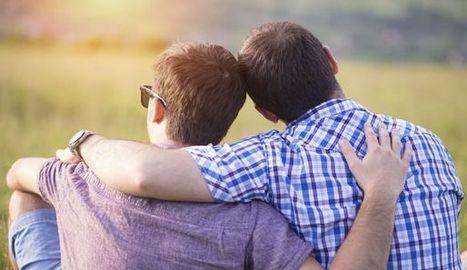 Couple homosexuel: comment expliquer ses origines à son enfant? - L'Express | Baby business (Surrogate mothers - GPA - PMA ) | Scoop.it
