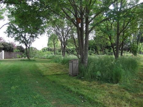Cercueils en carton et corps rendus à l'humus: le cimetière devient écolo | Économie circulaire locale et résiliente pour nourrir la ville | Scoop.it
