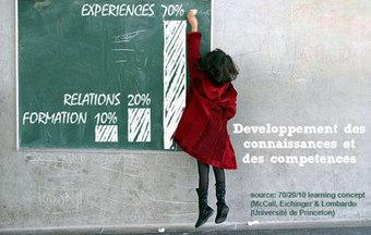 Apprentissage formel ou informel ? Les deux mon capitaine ! - Organisations  - Le Monde.fr - IBM - Une Planète Plus Intelligente | PEDAGO-ANDRAGO-APPRENANCE | Scoop.it