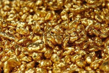 Découverte d'une bactérie qui fabrique de l'or | jiji33 | Scoop.it