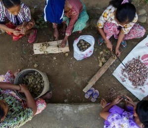Global study of forests and livelihoods shakes up the terrain   Nature and Culture   Scoop.it