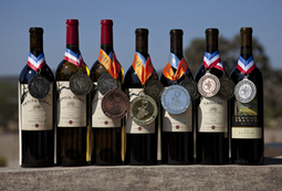 TAKE THAT! TEXAS WINERY 'BENDING BRANCH' WINS DOUBLE GOLD AT AMERICA'S TOUGHEST WINE COMPETITION | Southern California Wine and Craft Spirits Journal | Scoop.it