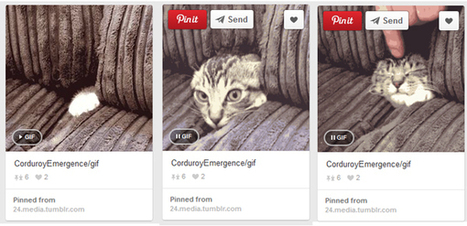 Pinterest Adds GIFs to Mobile - SocialTimes | Mon cyber-fourre-tout | Scoop.it