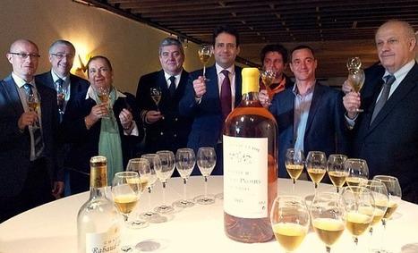 Exportation du vin: Matthias Fekl se dit prêt à simplifier et à accompagner | Agriculture Aquitaine | Scoop.it