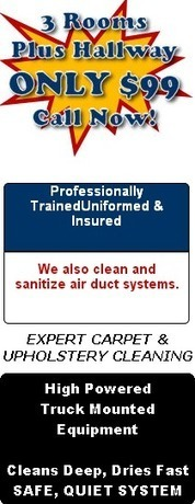 A1 Red Carpet – The carpet cleaner you need to call in Castle Rock CO | A1 Red Carpet | Scoop.it