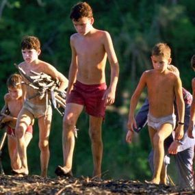 Why All Leaders Should Read Lord of the Flies | Education | Scoop.it