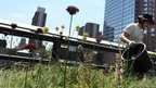 Why cities want parks in the sky | Geography - The World Around Us | Scoop.it