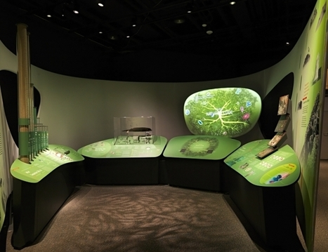 IL Y A 3 ANS...« Genome », une expo très numérique au Smithsonian National Museum of Natural History | Clic France | Scoop.it