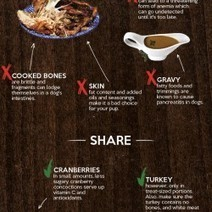 What You Can and Can't Share With Your Dog on Thanksgiving Infographic | Infographics | Scoop.it
