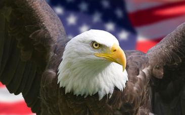 5 Shameful Ways the United States is Leading the World | Nature Animals humankind | Scoop.it