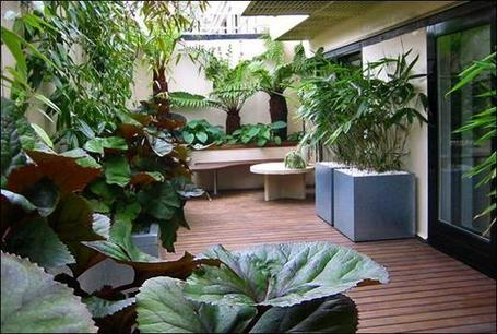 22 Fabulous Container Garden Design Ideas for Beautiful Balconies and Backyard Landscaping | Balcony Gardening | Scoop.it
