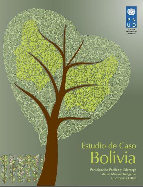 Estudio de caso de Bolivia. Participacion Politica y Liderazgo de las Mujeres Indigenas   Genera Igualdad   Scoop.it