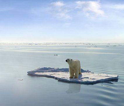 Réchauffement climatique : les premiers signes dateraient des années 1940 | Nature Animals humankind | Scoop.it
