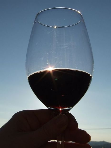 The Basics Behind a Glass of Red Wine | wines and spirits | Scoop.it