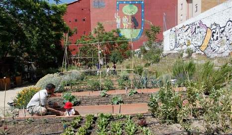¿Por qué no tener una huerta en la ciudad? - 20minutos.es | Horticultura | Scoop.it