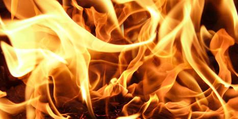 Worse Than Hitler: Why Do Flamewars Happen? | Vloasis humor | Scoop.it