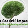 Center For Self Improvement