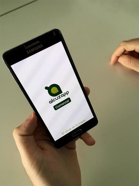 Emprendedores crean una aplicación para controlar la campaña de la aceituna desde el móvil | Cultivos | Scoop.it