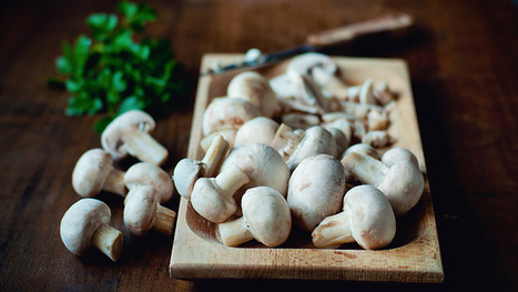 How Living With MS Is Like Cooking Mushrooms - Everyday Health (blog) | Best Easy Recipes | Scoop.it
