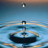 Pollution eau | Projets SVT 3èmes Thème 8 : Pollution des sols et de l'eau et risques pour la santé | Scoop.it