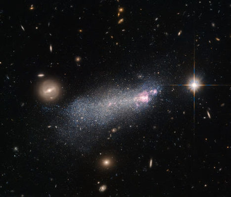 Hubble Captures Image of Rare Wolf-Rayet Galaxy | Amazing Science | Scoop.it