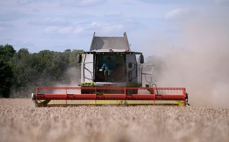 Britain should reap the rewards of GM crops   BIOSCIENCE NEWS   Scoop.it