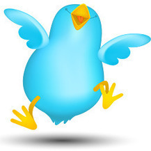 7 Simple Rules to Success on Twitter | SOCIAL MEDIA, what we think about! | Scoop.it