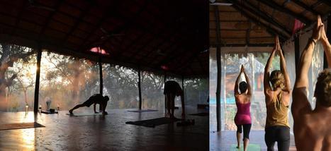 Benefits of Yoga in Goa | Yoga In Goa India | Swan Yoga Retreat | Scoop.it