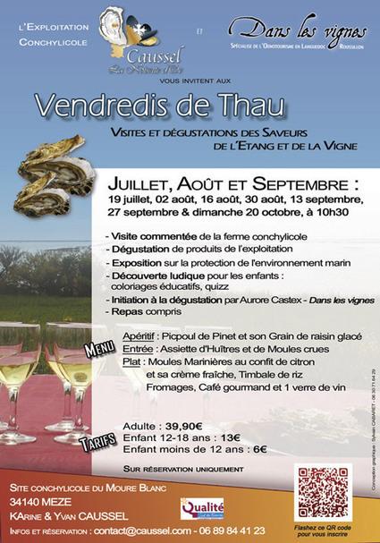 Les Vendredi de Thau dégustation des saveurs de l'étang et de la vigne | Tourisme du vin | Scoop.it